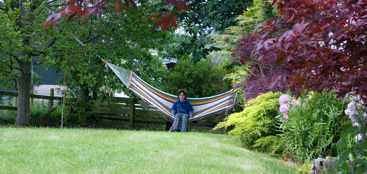 garden and hammock